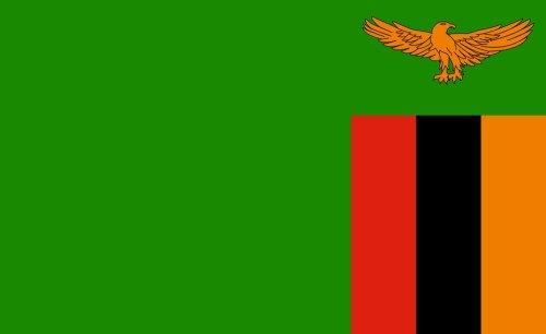 Zambia: Xenophobia Flares Ahead of Zambian Elections