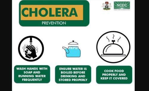 Nigeria: Improving Water, Sanitation and Hygiene in Nigeria - the Only Language Cholera Understands