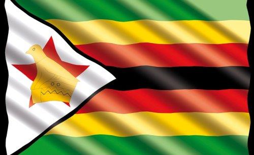 Zimbabweans Are Biggest Cowards in the Region - Report