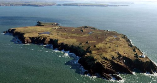 Rabbits Burrowing On A Remote Welsh Island Just Unearthed A Cache Of 9,000-Year-Old Artifacts
