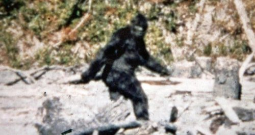 The True Story Of The Patterson-Gimlin Film That Some Say Proves Bigfoot Is Real