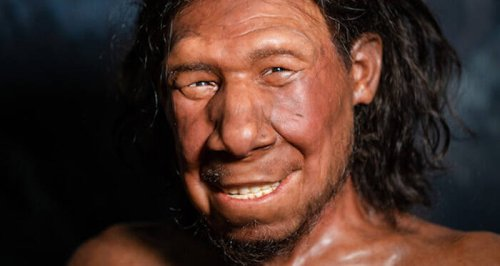 Researchers Just Reconstructed The Face Of The Oldest Neanderthal Ever Found In The Netherlands