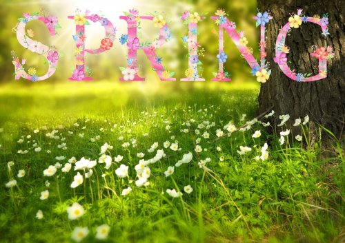 First Day of Spring 2021: The Spring Equinox