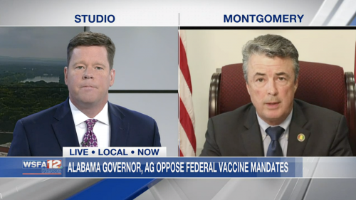 Opinion   News anchor used facts to interview Steve Marshall. An actual discussion happened