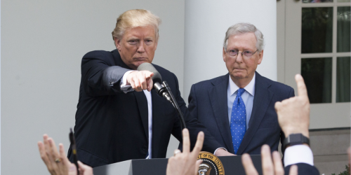 There is 'little appetite for' Trump's plan to oust McConnell from his GOP leadership role: report
