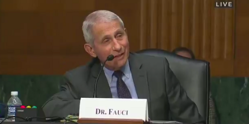 'Not going to play that game': Fauci shuts down GOP senator's attempted gotcha question