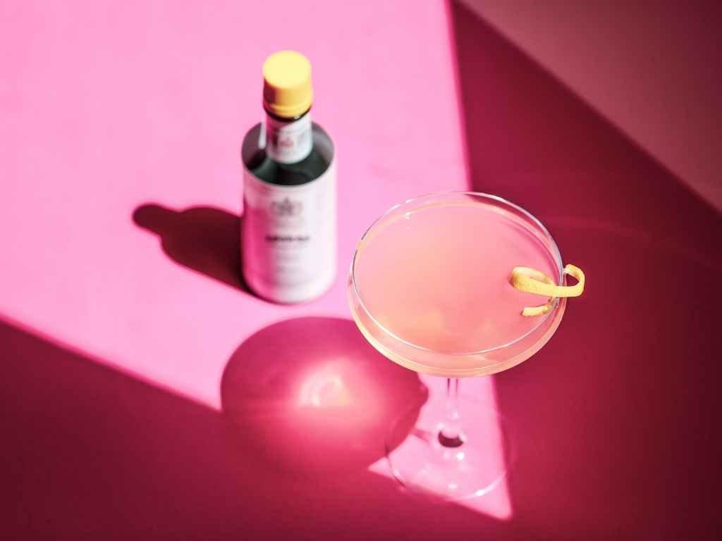 Pink Gin Martini Cocktail Recipe