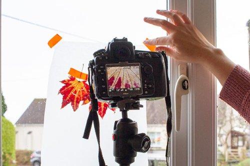 30 money-saving ways to shoot on a budget - Amateur Photographer