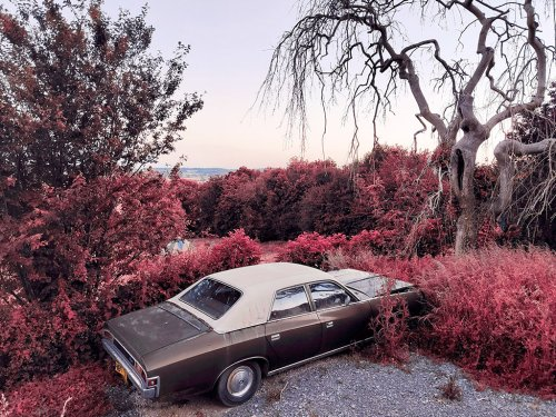Get great-looking infrared photos on your phone - Amateur Photographer