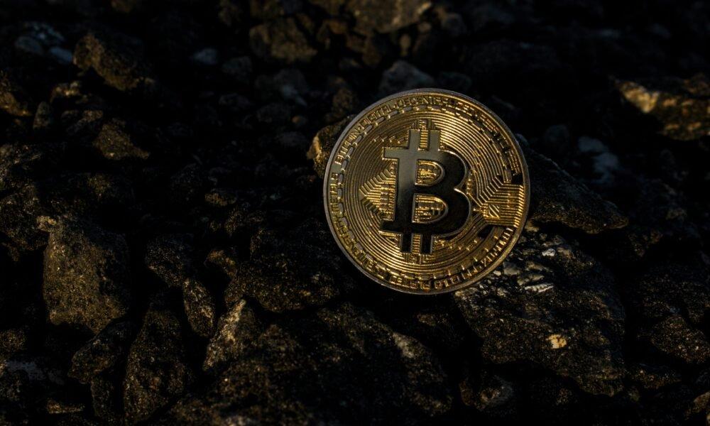 Bitcoin, XRP, Dogecoin Price Analysis: 24 June