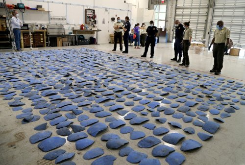 Endangered sea turtle shells disguised as blue plastic seized at Miami airport