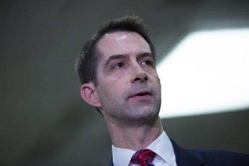 Sen. Cotton demands Lockheed Martin explain diversity training that drove executives to allegedly call white men 'racist,' 'KKK,' 'privileged'