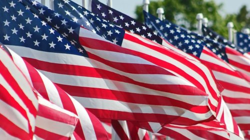 NYT, MSNBC contributor says dozens of American flags on trucks near NYC is 'disturbing'