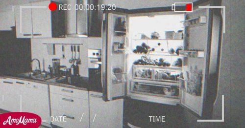 Old Lady's Food Disappears from Fridge, She Hides a Camera to Find Out Why — Story of the Day