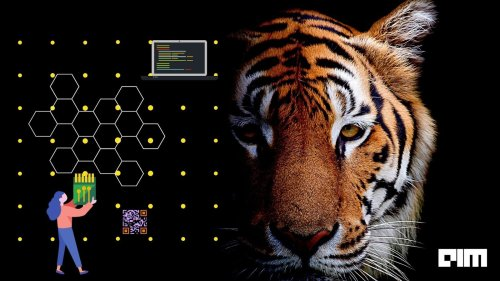 How AI Is Changing The Dynamics Of Wildlife Conservation