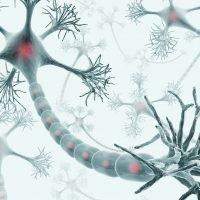 Artificial Neural Networks – Better Understanding !
