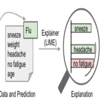 Beginner's Guide to Machine Learning Explainability