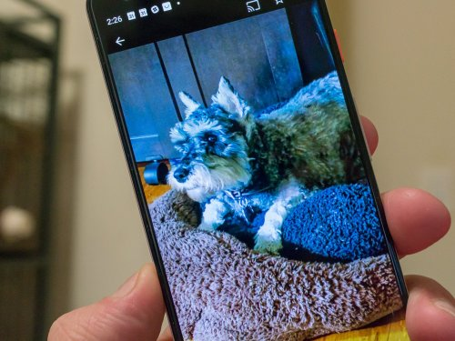 If you don't want to pay Google for photos storage, here's how to leave