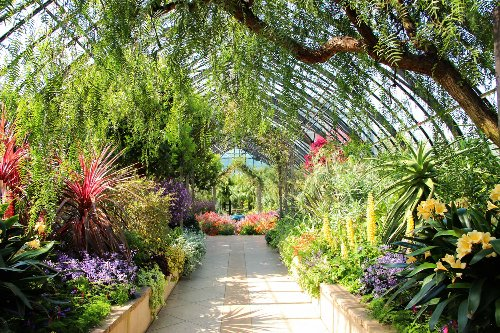 9 of the Biggest Botanic Gardens to Visit in the U.S.