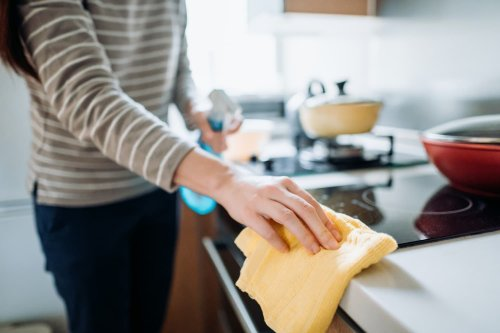 We Asked 5 Professional House Cleaners What They Use to Clean at Home