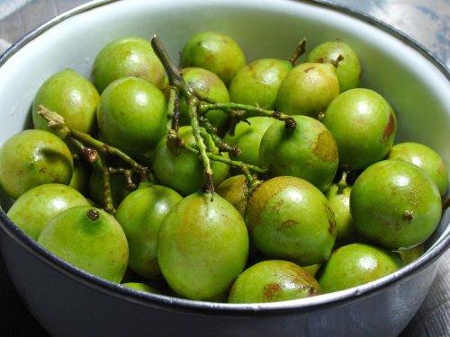 Mamoncillo: A Tangy Tropical Fruit