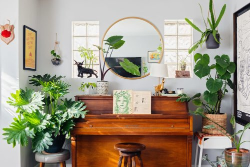 I Have 90+ Houseplants—Here's How I Keep Every One of Them Alive