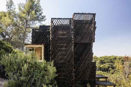 Behold: A Quarantine Cabin Made From Pine Trees, Nestled in a Natural Park