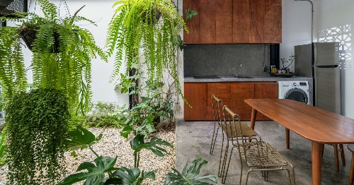 Verdant Abodes: 6 Plant-Filled Residences That Bring the Garden Indoors