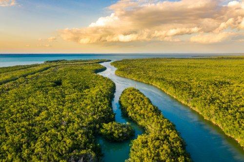 DeSantis, Army Corps move forward on billion-dollar Everglades Project