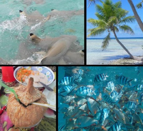 French Polynesia: The Best Snorkeling Ever!
