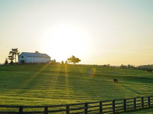 Explore the Bourbon Trail in Your RV