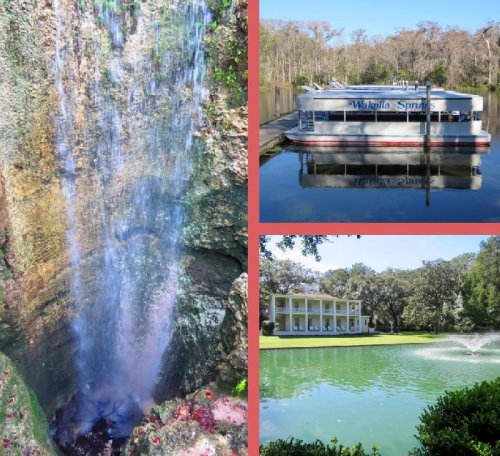 Florida State Parks Annual Pass: Should You or Shouldn't You?