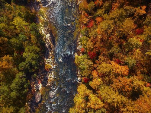 Drive the Blue Ridge Scenic Loop from Asheville