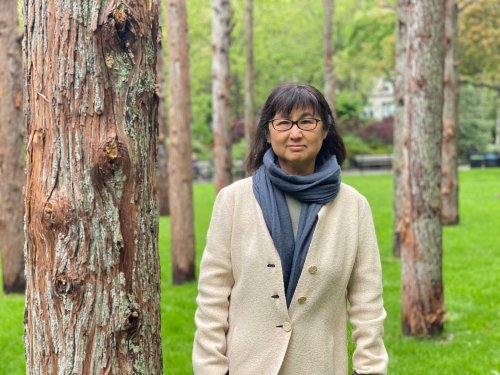 'I Call Them My Gentle Giants': How Artist Maya Lin Planted 49 Towering Cedar Trees in the Middle of New York City | Artnet News