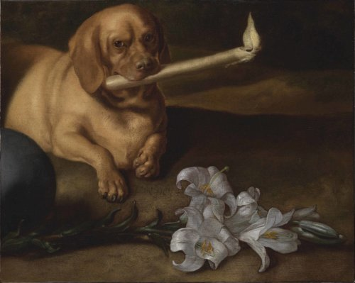Wait, Why Are So Many Dogs Smoking Joints in Old Art? We Looked Into It, and the Answer Is Pretty Far Out | Artnet News