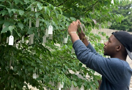 Hiroshi Sugimoto, Ugo Rondinone, and Other Artists Have Hand Written Hopes for Yoko Ono's 'Wish Tree'—See Their Messages Here