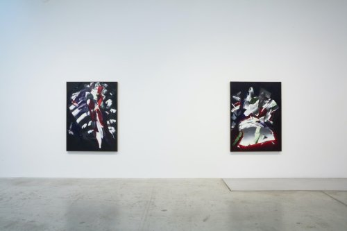 Cold Light: Deborah Remington at Bortolami and Craig F. Starr