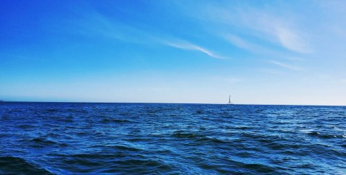 World Ocean Day - American Sailing Association