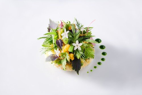 Earth Day 2021: The Best Vegetarian and Vegan Tasting Menus to Try in Asia