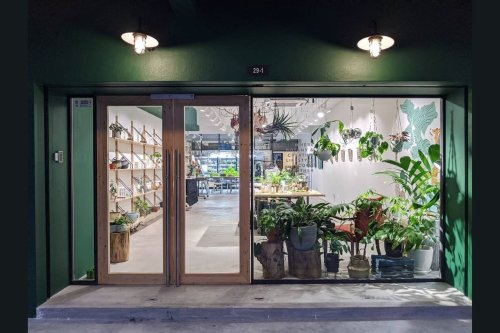9 Instagram-Worthy Plant Stores In Malaysia