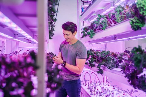 Get to Know Benjamin Swan of Sustenir Agriculture, a Pioneer in the Sustainable Food Revolution