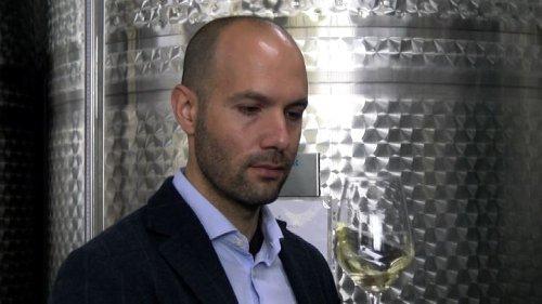 Il re dello zibibbo calabrese: una storia di vino e coraggio