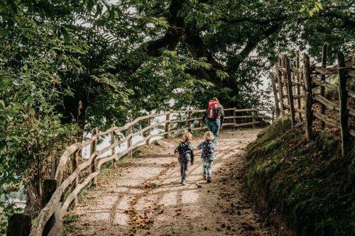 Informativer Spaziergang auf dem Kastanienweg in Südtirol