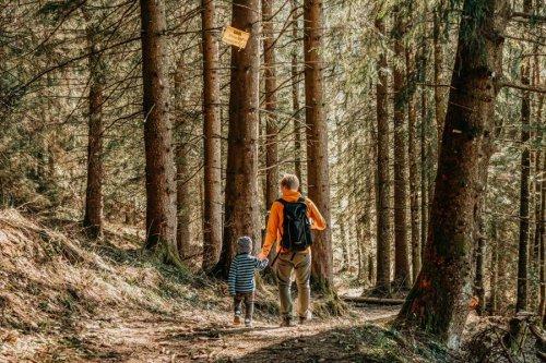 Adelegg: Gemütliche Wanderung im Kreuztal im Westallgäu