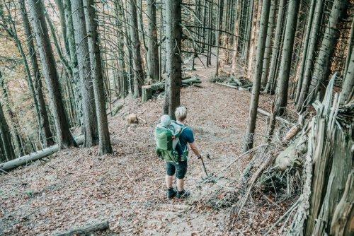Genussvolle Wanderung zur Sennalpe Derb Oberberg im Allgäu