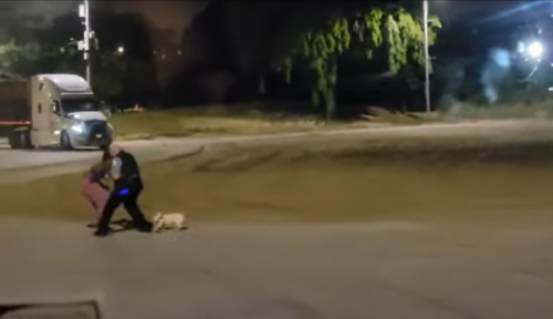 'Respect Your Space?': Reactions Split After Bodycam Footage Shed New Details On Confrontation Between Black Woman Walking Her Dog and Chicago Cop