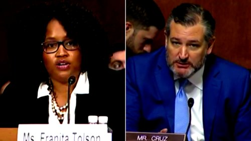 Professor Franita Tolson Tells Sen. Ted Cruz To His Face That Texas Voter ID Laws Are 'Racist': 'Your State of Texas, Perhaps?'