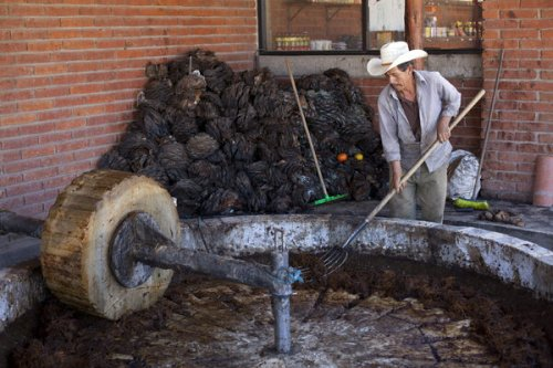 How a 'Bubble Expert' Decoded the Physics of Making Mezcal