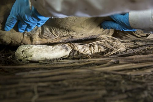 The Mystery of the Mummified Bishop and the Fetus in His Coffin