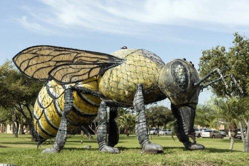 'World's Largest Killer Bee'